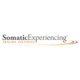 SE Trauma Institute Logo